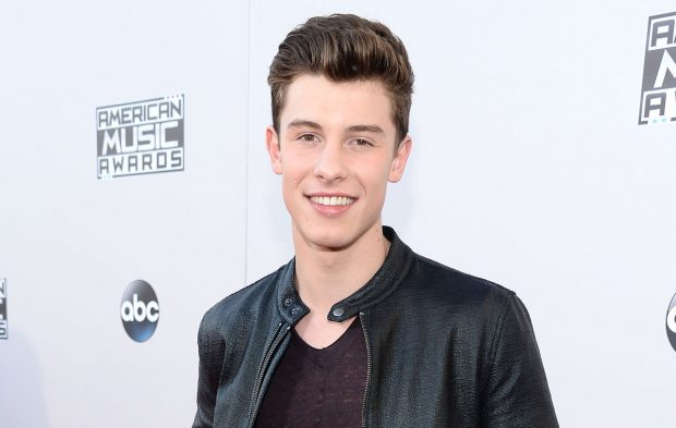 Photo Gallery: Shawn Mendes at the 2015 AMAs