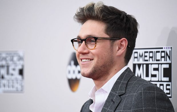 How One Niall Horan Fan Slayed the 2016 AMAs